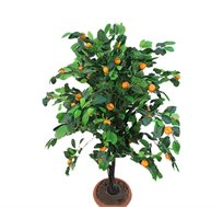 עציץ נוי תפוז ננסי גזע טיבעי פלסטיק לבית ולגן