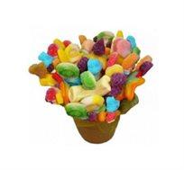הילולה - זר מתוק ומיוחד מסוכריות גומי השזורות בתוך כלי חרס מרהיב בצבעוניותו