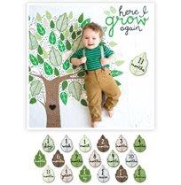 מארז טטרה וכרטיסיות לשנה הראשונה עץ החיים -Lulujo