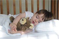 כרית שינה גדולה לפעוטות למיטת תינוק או מעבר