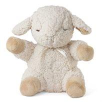 כבשת השינה