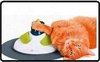 מרכז מסאג' משחק לחתול