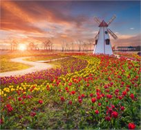חבילת נופש ל-7 לילות בכפר נופש בהולנד כולל רכב החל מכ-€757*