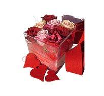 """""""לה רוז"""", סידור מיוחד של 9 ורדים אדומים השזורים בצורה אמנותית"""
