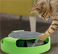 משחק 'תפוס את העכבר 'לחתול