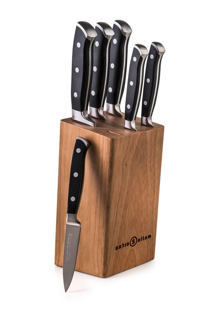 שישה סכינים עם בלוק עץ סכינים