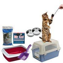 ערכת אימוץ חתול חדש במבצע