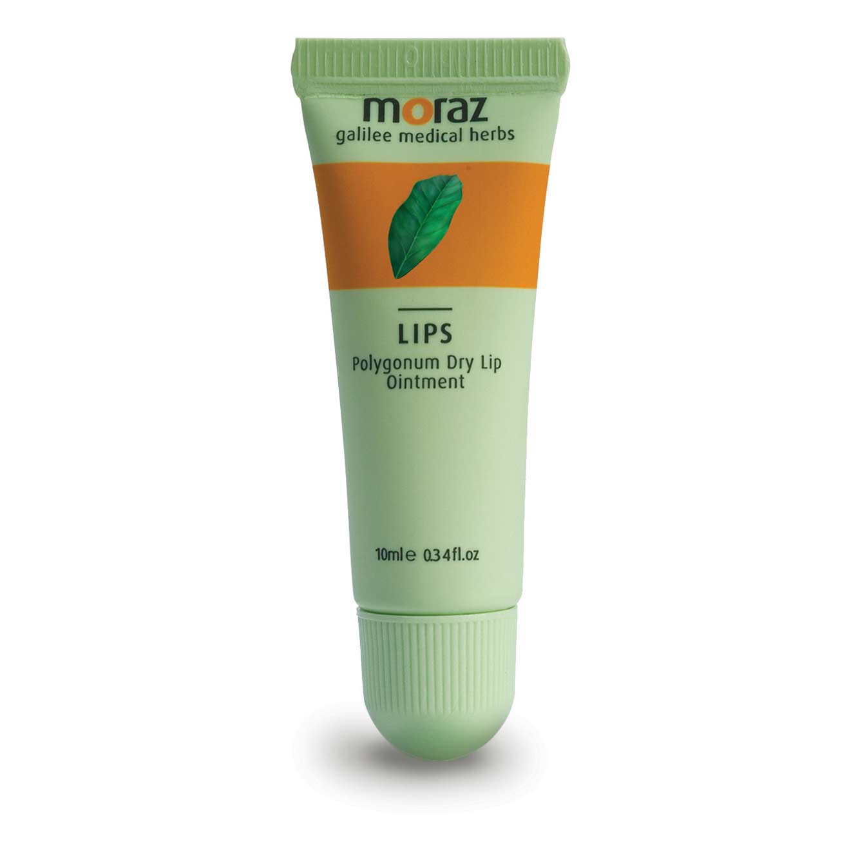 2 יחידות מגן שפתיים לטיפול ביובש ובסדקים