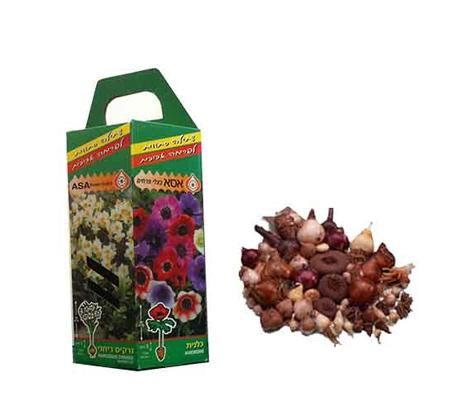 אריזת פקעות כולל קטלוג וחוברת הוראות לשתילה וגידול של פרחים