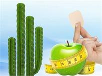נמאס לכם מדיאטות שלא מחזיקות מעמד? הכירו את מדבקות הודיה, להרזיה טבעית, בטוחה וללא מאמץ