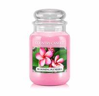 """נר ריחני בצנצנת בניחוח Blooming Plumeria תוצרת ארה""""ב COUNTRY CANDLE"""