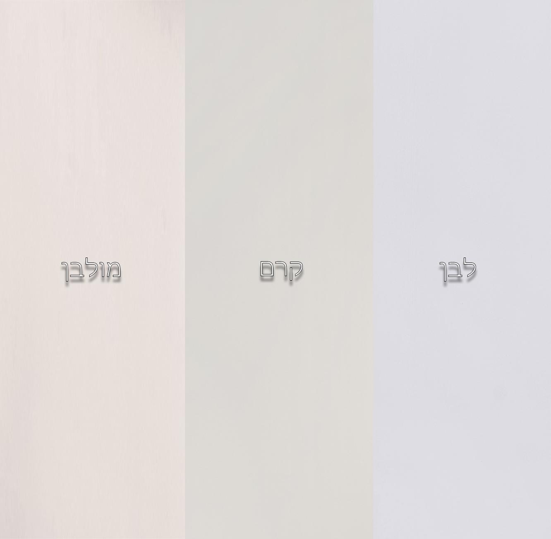 שידת מדפים עם 3 דלתות אחסון ותאים פתוחים עשויה מעץ מלא דגם דנה בצבעים לבחירה HIGHWOOD - תמונה 2