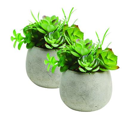 זוג עציצי נוי עם צמחים מלאכותיים