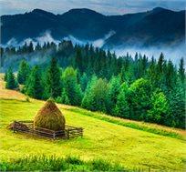 5 ימים של טיול מאורגן ברומניה כולל טיסות, מלונות וסיורים החל מכ-€444*