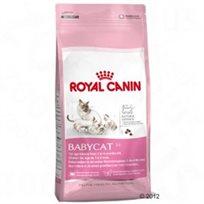 מזון לגורי חתולים רויאל קאנין בייבי - קט 4 ק''ג