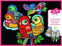 יצירה לקטנים - צביעה לבד ציפורים - Djeco