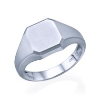 טבעת חותם זהב לבן מט