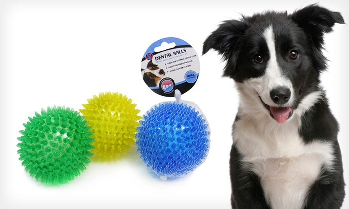 משחק לכלב- כדור קופצני דנטלי בריח וניל