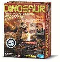 חפירת שלד דינוזאור Velociraptor - 4M