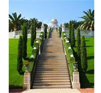 חופשת קיץ מפנקת בחיפה! רק ₪1399 לזוג ל-2 לילות כולל ארוחת בוקר במלון 'גארדן' בחיפה - ילד ראשון חינם!
