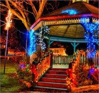 לאור הביקוש המלאי חודש, מאירים את הגינה! שרשרת תאורה סולארית באורך 7 מטר בעלת 50 נורות LED