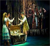 כרטיס להצגה 'אי המטמון' של תיאטרון אורנה פורת ב-4.12