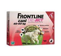 """טיפות להדברת פרעושים Frontline לכלב במשקל של 40-60 ק""""ג"""