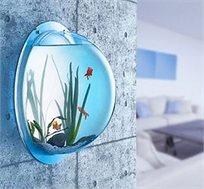 מקשטים את הבית ברגע! אקווריום מרהיב לדגים או צמחייה שיוסיף טאץ' צבעוני לכל חדר, משרד או חדר מדרגות