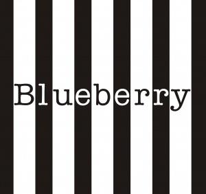 Blueberry - חנות אונליין