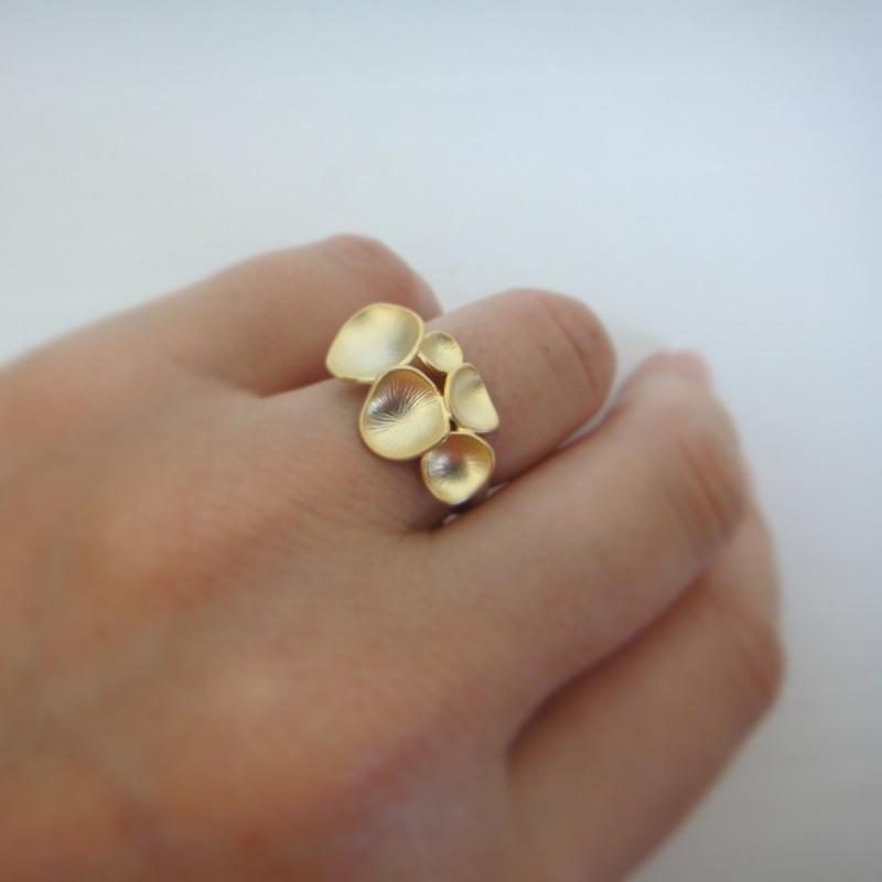 טבעת עיגולים