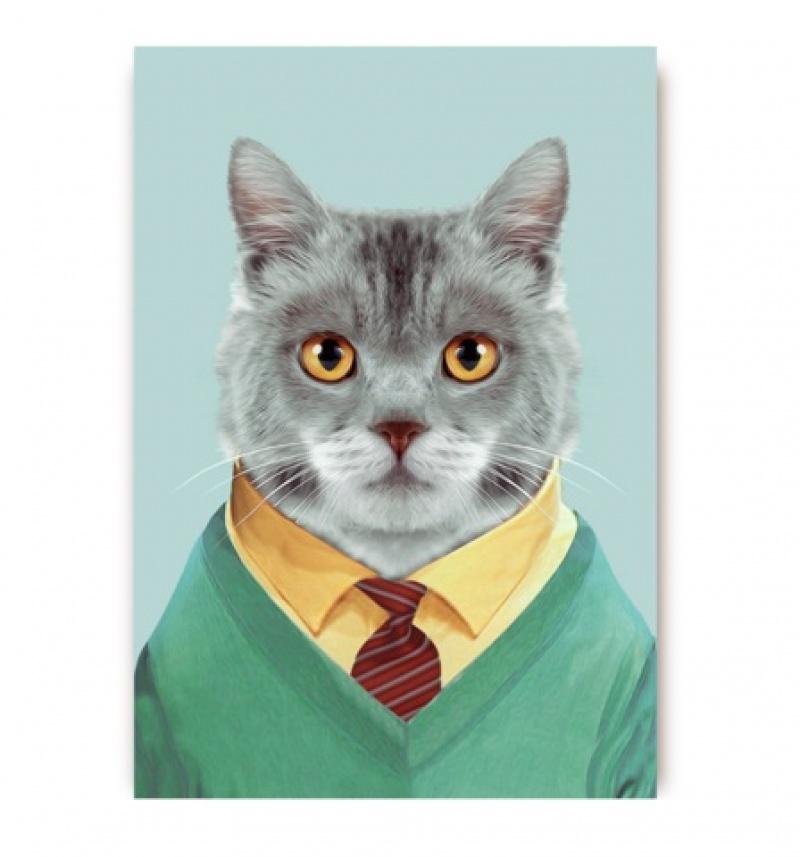 גלויה חתול מעונב