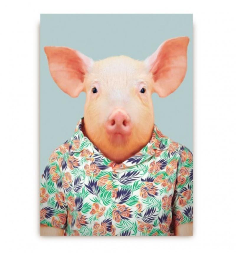 גלויה חזיר בחולצה פרחונית