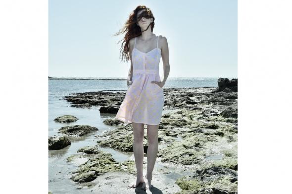 שמלת אגם ברווזים
