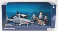 מארז גדול חיות האוקינוס והקוטב National Geographic