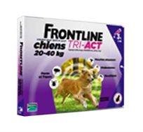 """טיפות להדברת פרעושים Frontline לכלב במשקל של 20-40 ק""""ג"""