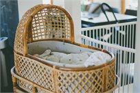 סט לעריסת תינוק בצבע אפור בהיר עם הדפס יער - Ndoto