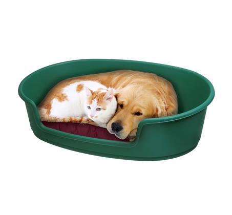 מיטה עשויה פלסטיק לכלב בשתי מידות לבחירה