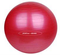 """כדור פיזיו בקוטר 65 ס""""מ לאימון פילאטיס ולחיטוב הגוף"""