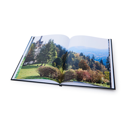 אלבום דיגיטלי איכותי A4 אנכי בכריכה קשה, 32 עמודים - תמונה 3