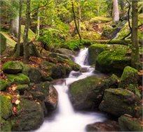 חופשה משפחתית ביער השחור ל-7 לילות החל מכ-€560*