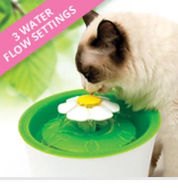 מזרקה לחתול עם פרח Cat It