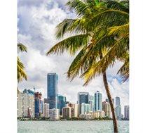 אמריקה בפסח! 12 ימי טיול מאורגן כולל שיט תענוגות בקריביים וניו יורק רק בכ-$3499* לאדם!