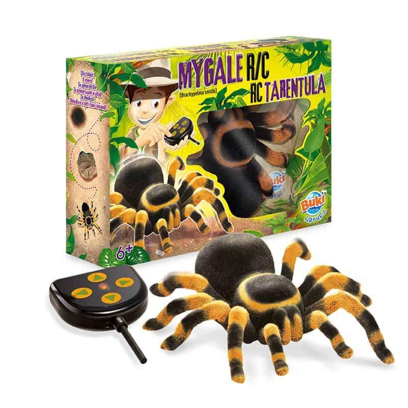 עכביש טרנטולה עם שלט מבית בוקי צרפת - משלוח חינם - תמונה 2