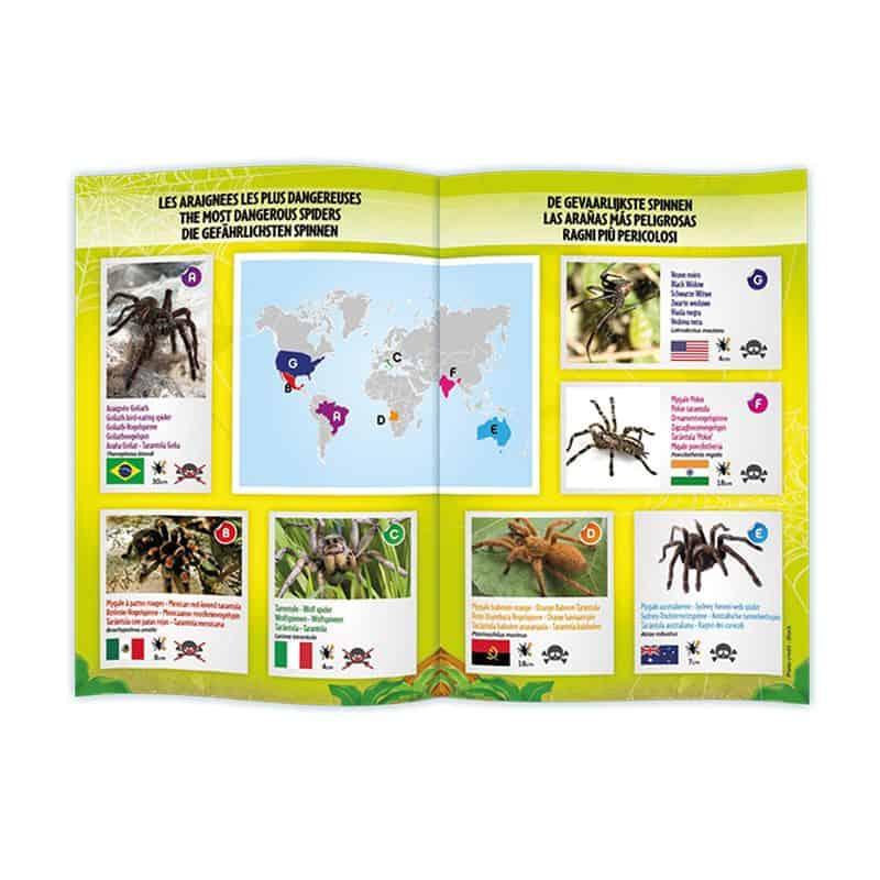 עכביש טרנטולה עם שלט מבית בוקי צרפת - משלוח חינם - תמונה 3
