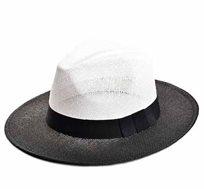 כובע רחב שוליים אוסטין - צבע לבחירה