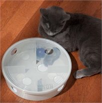 מבוך לחתול - משחק אינטרקטיבי מבית קונג