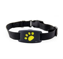 מכשיר איתור זעיר המאפשר מעקב אחרי הכלב או החתול בזמן אמת באמצעות אפליקציה