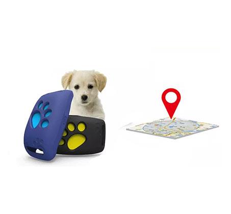 מכשיר איתור זעיר המאפשר מעקב אחרי הכלב או החתול בזמן אמת באמצעות אפליקציה - משלוח חינם - תמונה 4
