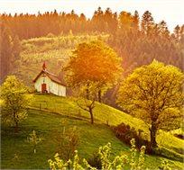 יולי-אוגוסט ביער השחור, 7 לילות בכפר נופש ביער השחור כולל טיסות ורכב לכל התקופה החל מכ-€589* לאדם!