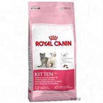 מזון לגורי חתולים רויאל קאנין 4 ק''ג Royal Canin